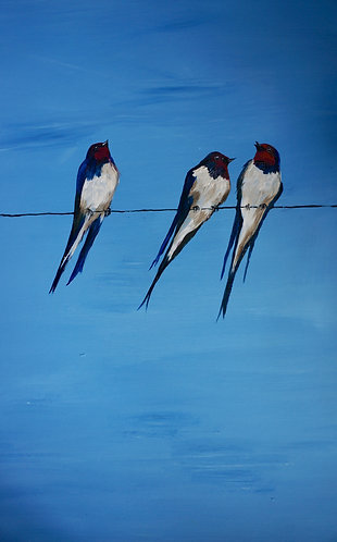 3 swallows on a line