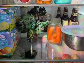 How to Slow Down Time, Part 2: Reduce Food Waste