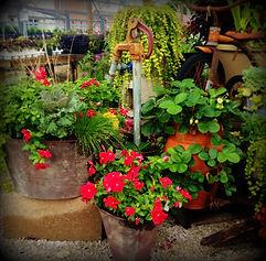 Lamar Greenhouse & Florist