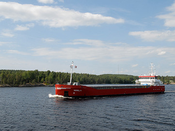 Management of Inland Waterway System of Russia - Admission for Foreign Flag Vessels