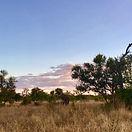 SouthAfrica_3.jpg