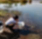 Screen Shot 2020-03-17 at 1.15.34 PM.png