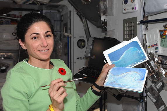 "Painting ""The Wave"" on ISS during Expedition 21"