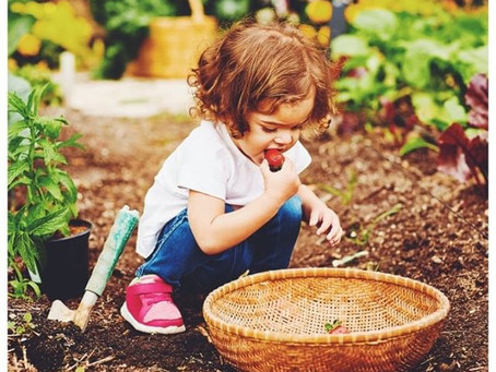 Back to the Garden Childcare in Broadheath: Taking care of your child and their learning environment