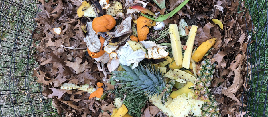 Composting at Home in Montclair