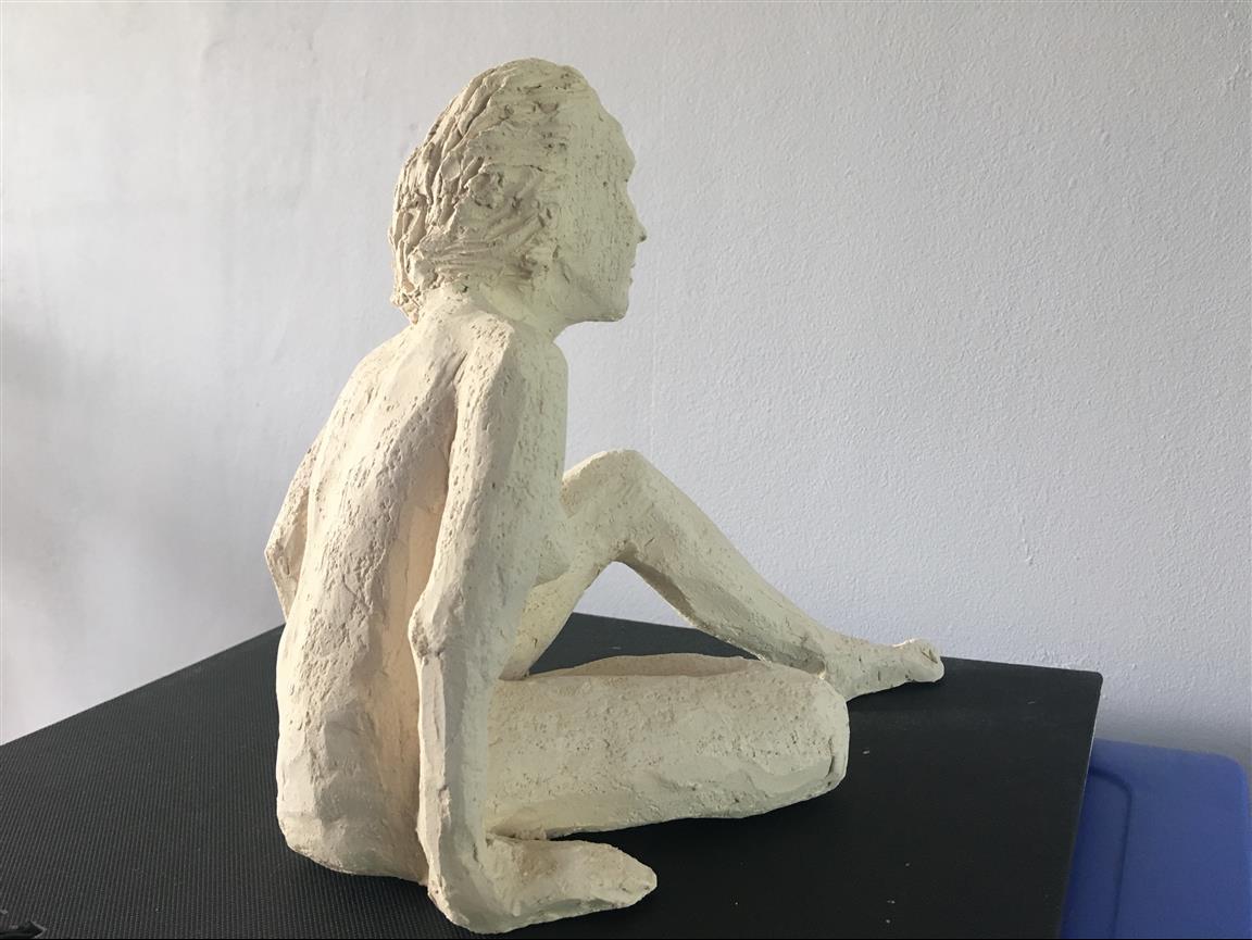Danaid Hippomedusa