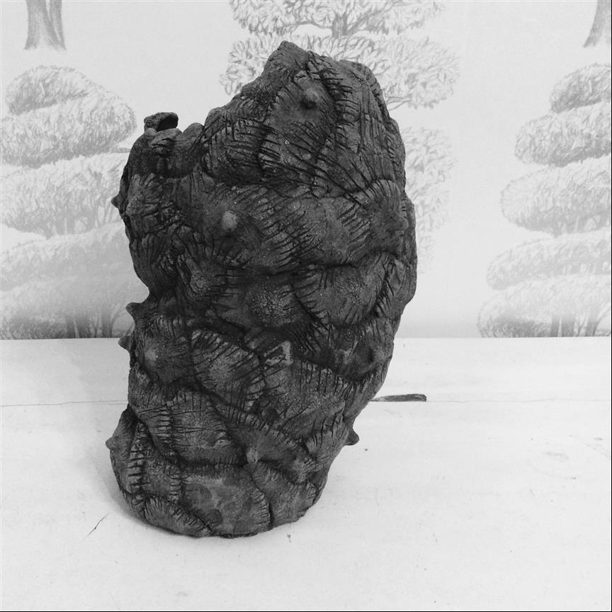 060 - Le vase impossible