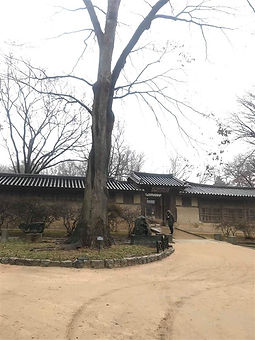 06 Seoul Changdeok secret garden 37.5829