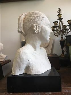 Danaid Hippodamia