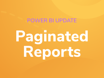 September 2021 Power BI Update - Paginated Reports with NetSuite Data