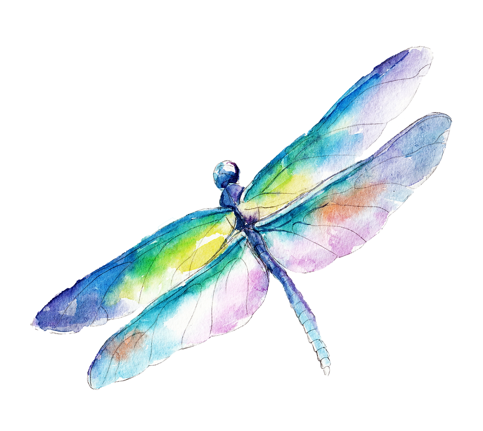 MS-Dragonfly.png