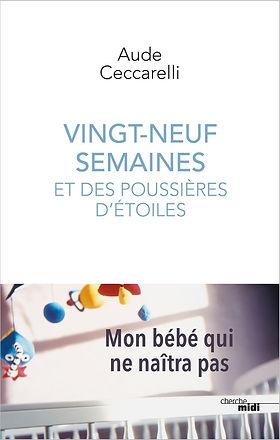 Poussières_d'étoiles_Aude_Ceccarelli.jpg