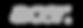 Acer gris web-01.png