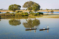 OKAVANGO-DELTA-HONEYMOON.jpg