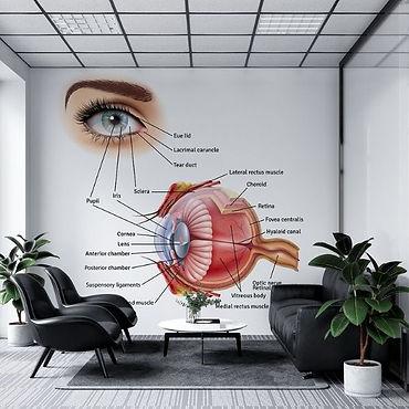 MEDICAL ROOM - 6 - INFOGRAPHIC.jpg