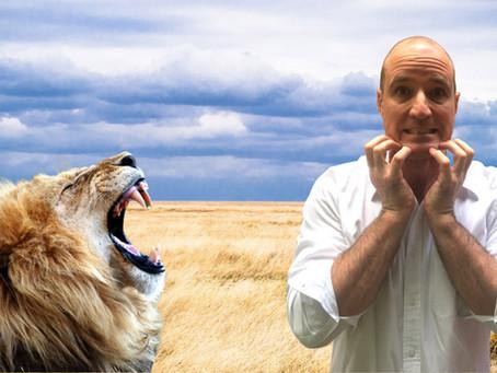 Is an African safari safe?