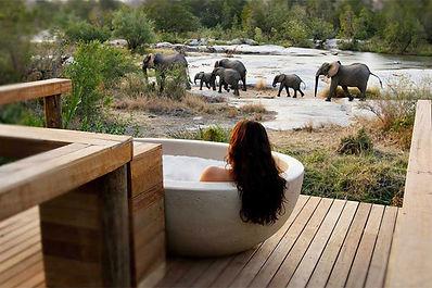 Five Star Luxury Safari