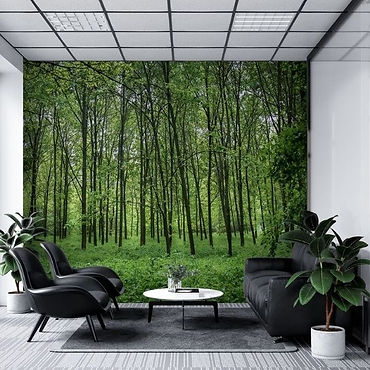 MEDICAL ROOM - 1 - TREES (1).jpg