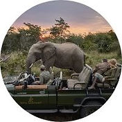 PRIVATE-SAFARI-GUIDES.jpg