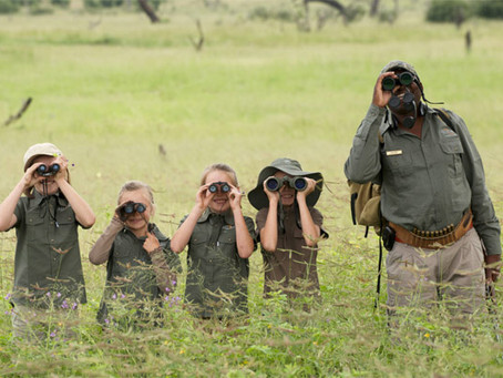 Tips to Plan Your African Safari Vacation Package