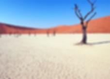 2-NAMIBIA.jpg