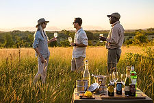 All Inclusive African Safaris