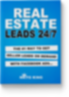 REAL-ESTATE-LEADS.png