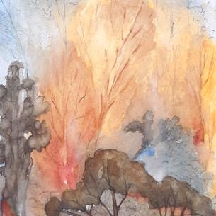 Terre brûlée III
