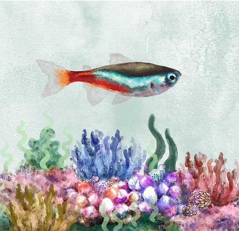 fish card prototype.jpg
