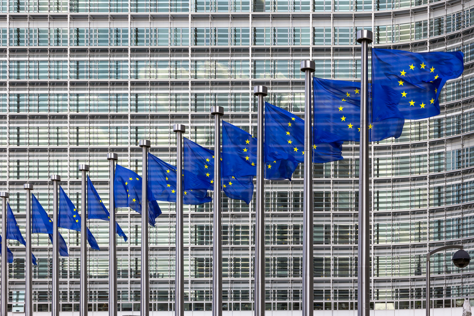 Row of EU Flags in front of the European