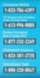 Coronavirus Hotline.jpg