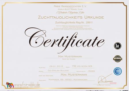 Sicherungskopie_von_ZTP neu.png
