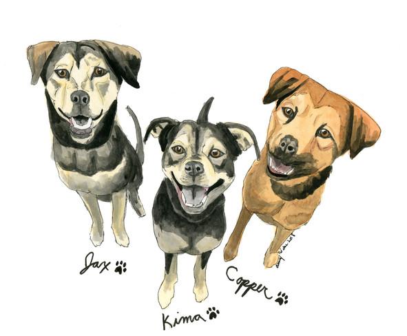 Jax, Kima, and Copper