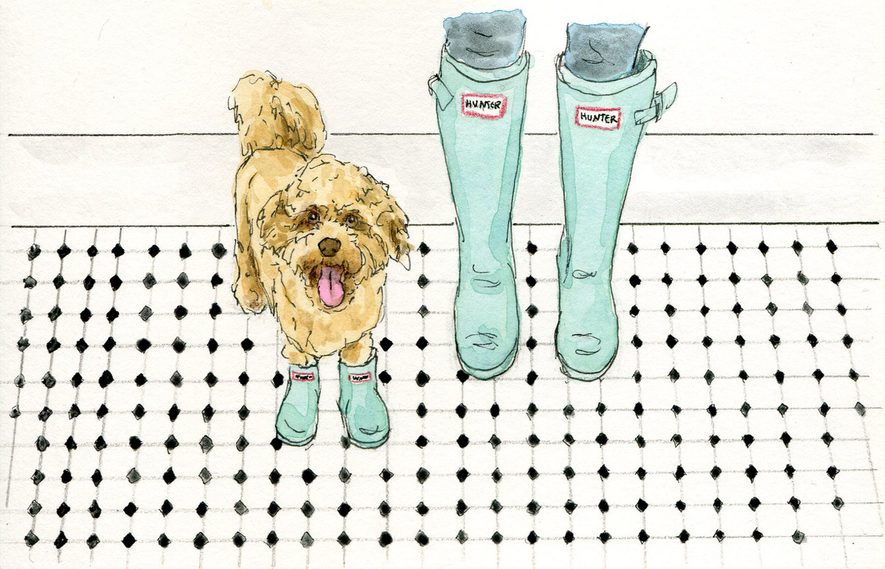 Pups in Boots