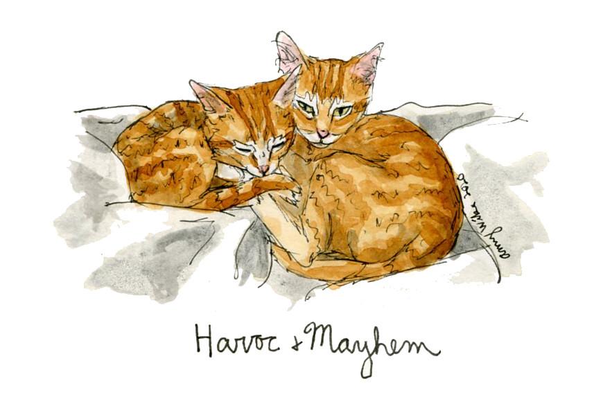 Havoc and Mayhem