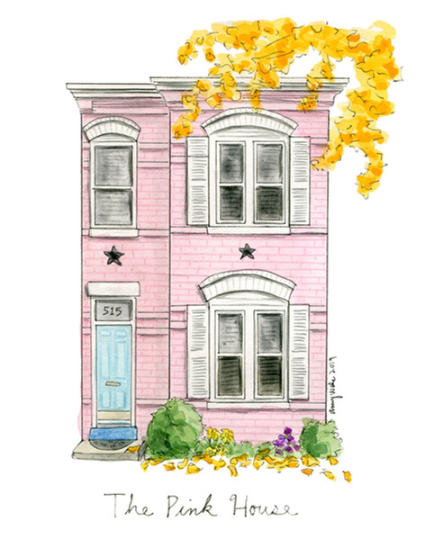 The Pink House