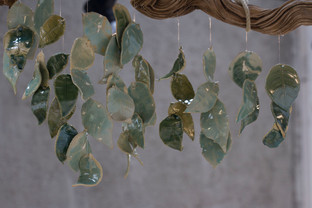 Installation d'Eliane Frauenfelder