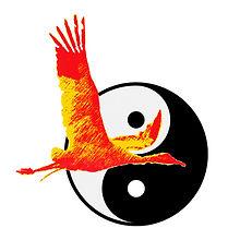 ceaetc /pratiquer le qigong et le taijiquan