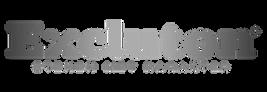 Excluton_logo website PNG.png