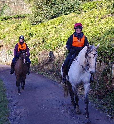 Endurance riders Pippsway Classical Horsemanship Natural Horsemanship Wellington Somerset near Devon