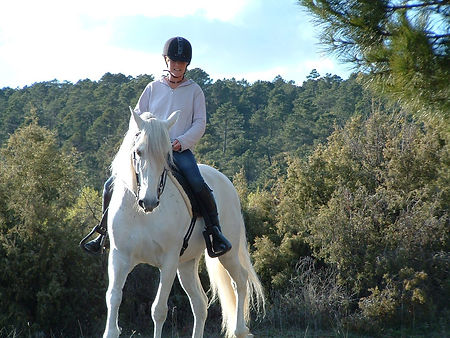 Pip Unwin Classical Natural Horsemanship Trainer based in Wellington Somerset near Devon training her horse