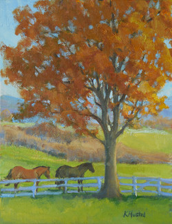 Horses Under the Maple Tree 12x16