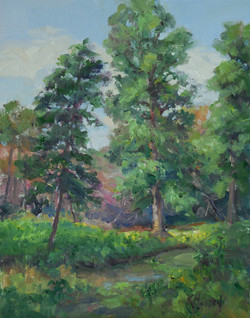 Woodland Trees 11x14
