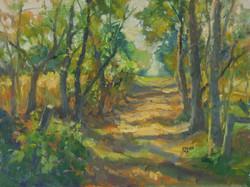 Farm Trail 12x16