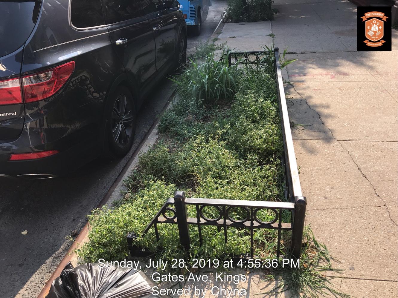 Help My Tree Pit
