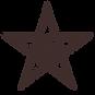Koko logo Star Purple.png