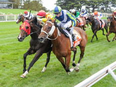 CHUCK A LUCK TRIUMPHS IN MORNINGTON GUINEAS