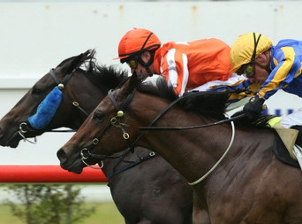 MAPPERLEY GRAD TALARIA WINS LISTED RACE ON DEBUT