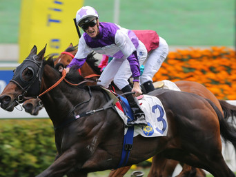 MAPPERLEY BRAND STRIKES AGAIN – RATTAN WINS THE GR.2 HKJC SPRINT CUP