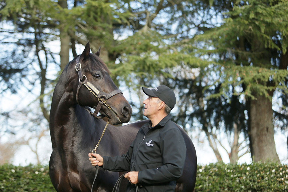 He's Remarkable with Stallion Manager Tony Mudgway